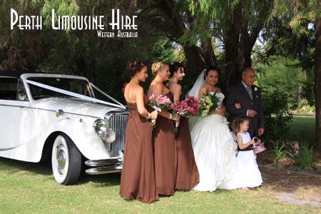 willow pond limo hire