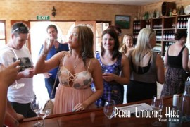 swan valley limo wine tours 88